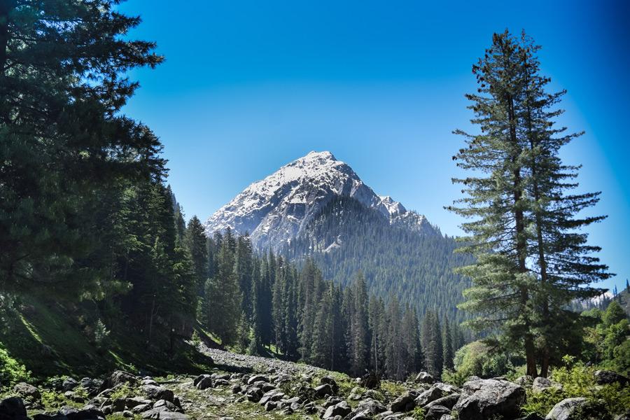 وادیٔ لدو کا ایک دلفریب منظر