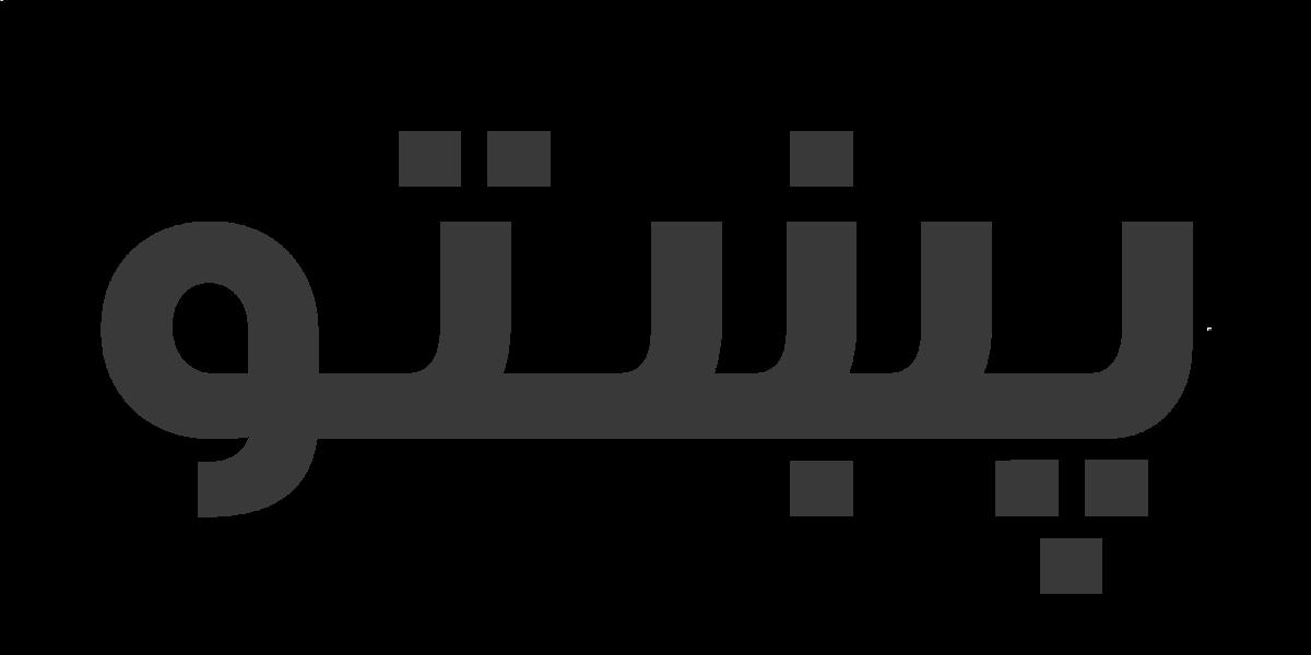 پختو ادبیات کے محققین کے کہنے کے مطابق بایزید روخان نے جو آثار چھوڑے ہیں ان سے پتا چلتا ہے کہ آپ کو پختو، عربی، پنجابی، ہندی اور فارسی زبانیں آتی تھیں۔ آپ نے شاعری اور نثر دونوں میں طبع آزمائی کی ہے۔ خیرالبیان کے نام سے آپ کی ایک کتاب شائع بھی ہوئی ہے جس میں آپ نے اُس وقت کے واقعات پر قلم اٹھایا ہے۔