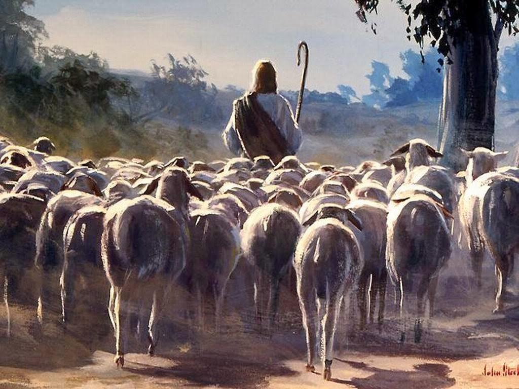 گاڑی کو آتا دیکھ کر چرواہے نے اپنی بکریوں کو زور زور سے ہانک کر سڑک سے ہٹانے کی کوشش کی اور ویگن ان کے ممیاتے ہوئے ہجوم میں سے رینگتی ہوئی گذرنے لگی۔