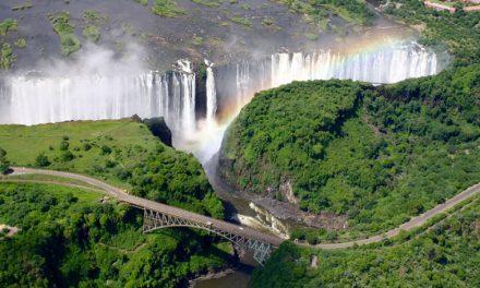 زمبابوے مارشل لا کی زد میں
